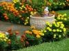 casa-com-jardim-2