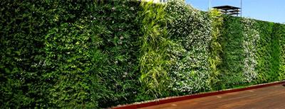 Tipos de sustrato para muros verdes free full version - Tipos de muros ...